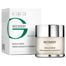 Крем успокаивающий себоконтроль Бикальм / GiGi Recovery Becalm Cream 250 мл