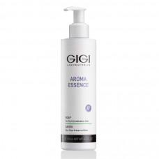 Мыло жидкое для комбинированной и жирной кожи / GiGi Aroma Essence Skin Soap For Oily And Combination Skin 250ml