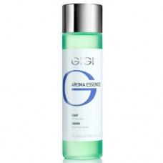 Мыло жидкое для сухой кожи / GiGi Aroma Essence Skin Soap For Dry Skin 250ml
